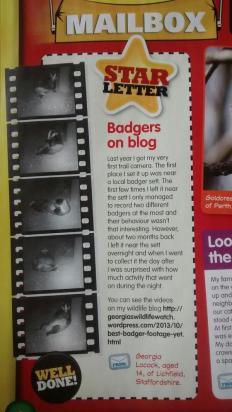 blogbadgers