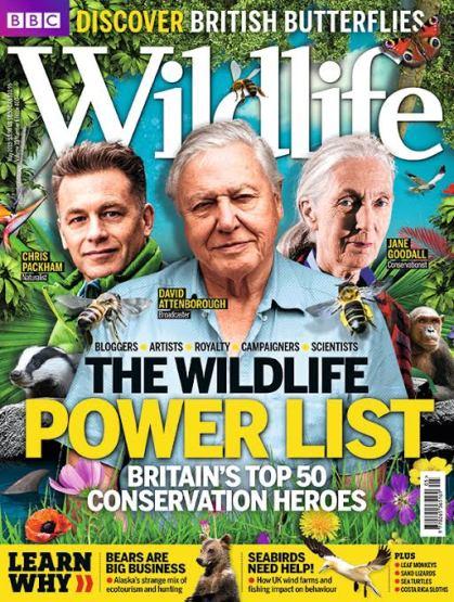 bbc wildlife mag